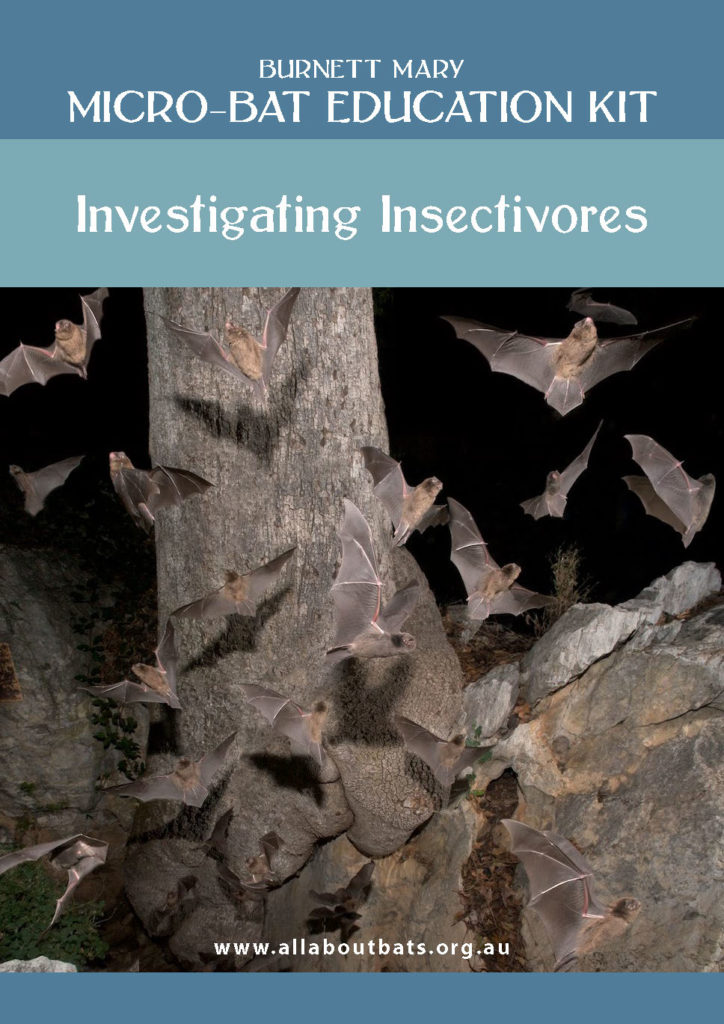 COVER - Micro-bat Education Kit - Investigating Insectivores