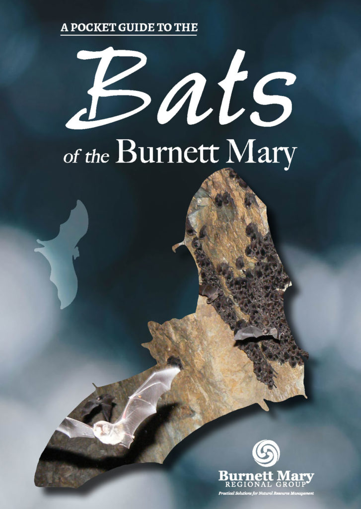 COVER - Pocket Guide to the Bats of the Burnett Mary