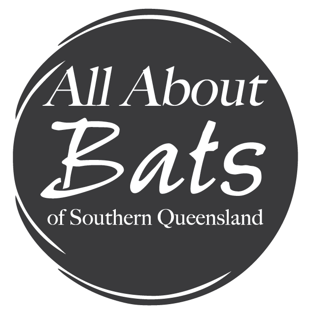 All About Bats